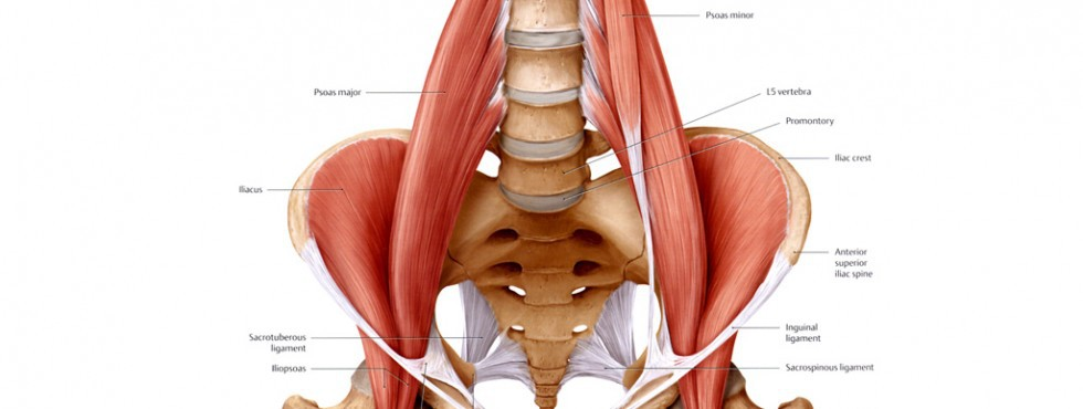 Address Those Tight Hip Flexors!