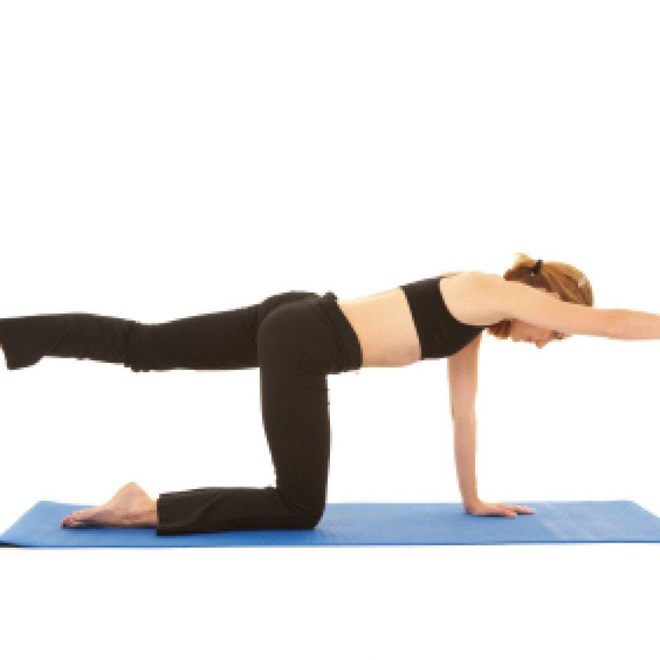 Strengthen Your Core With Quadruped Alternating Arm And